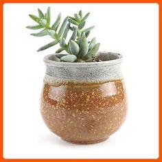 T4U 2.75 Inch Ceramic Summer Trio No.2 succulent Plant Pot/Cactus Plant Pot Flower Pot/Container/Planter Yellow - Lets plant (*Amazon Partner-Link)