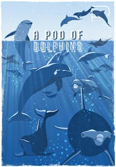 Woop Studios - A Pod of Dolphins