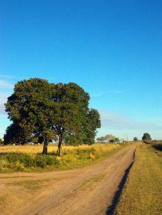 Camino rural en Irigoyen, Santa Fe Argentina.