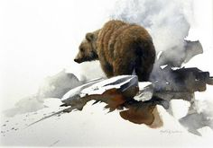 Grizzly Morten Solberg (American)