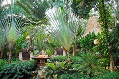 Best Vacation- Best Hotel Thailand- Pimalai Resort, Koh Lanta: Best of Vacation - Palm Trees Landscaping, Tropical Landscaping, Tropical Gardens, Florida Palm Trees, Resort Style, Best Vacations, Resort Spa, Beach Resorts, Beautiful Homes
