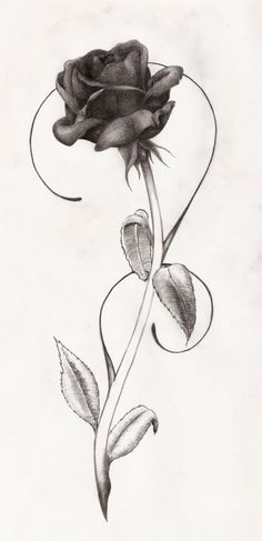 http://i767.photobucket.com/albums/xx315/xPaperStarx/Artwork/TattooRose.jpg: