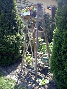 An old wooden ladder, used as trellis for clematis.  Until clemetis fills in I bolted a box that clementines come in to the shelf and filled with annuals.