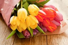 We've got a cure for the blahs... Just buy a bunch of colorful, fresh-cut tulips! (and check out this great article with great tulip tips)