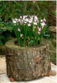 Love this flower pot idea!