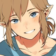 After the events of zelda botw zelda and link will be able to get closer thanks to an idea from Pru'ha. Romance between Zelda and Link The Legend Of Zelda, Legend Of Zelda Memes, Legend Of Zelda Breath, Art Manga, Anime Manga, Anime Guys, Anime Art, Princesa Zelda, Link Zelda