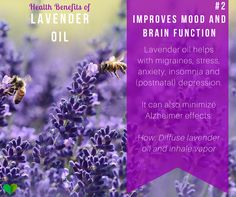 The Wonderful Health Benefits of Lavender Oil Homemade Beauty Recipes, Natural Beauty Recipes, Natural Home Remedies, Herbal Remedies, Be Natural, Natural Living, Lavender Benefits, Health Plus, Lavender Oil
