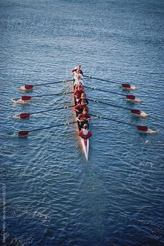 Women's crew team rowing in unison by Shelly Perry