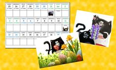 presentation calendrier Splat Le Chat, Maths, Comme, Albums, Presentation, Couture, Calendar For 2016, Back To School, Period