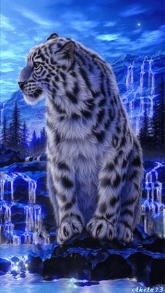 Animation Snow Leopard sitting on the rock against the backdrop of the waterfalls and the night sky, by SIFCO Snow Leopard sitting on the rock against the backdrop of the waterfalls and the night sky, by Big Cats Art, Cat Art, Beautiful Cats, Animals Beautiful, Animals And Pets, Cute Animals, Wild Animals, Tiger Art, Cool Cats