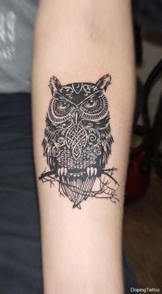 26_owl1.jpg (700×1268)