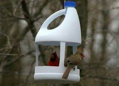 A very Good Idea for Birds Water & Shower. Just cut 5 Litre oil container as shown. Best from Waste. #recycledcraftsforhome