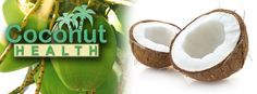 Top Coconut Health Stories from 2013