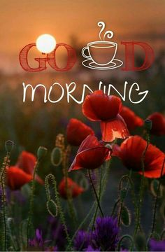 Morning Coffee Images, Good Morning Beautiful Pictures, Good Morning Picture, Good Morning Flowers, Morning Pictures, Good Morning Thursday, Good Morning Funny, Good Morning Good Night, Good Morning Wishes