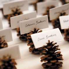 New wedding winter pine cones place cards 20 Ideas Christmas Wedding, Fall Wedding, Christmas Time, Rustic Wedding, Christmas Crafts, Elegant Wedding, Xmas, Trendy Wedding, Christmas Place Cards