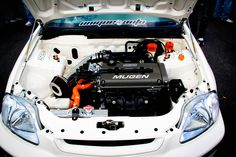 Mugen Civic   Do you love Jdm cars? beautiful women? Fast Cars? Stanced cars? Then check out my website an