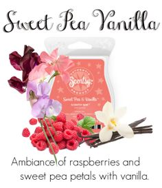 Sweet Pea Vanilla.....Place Your Order Today at: http://BernadetteWard.Scentsy.US Follow Me on FaceBook at: My Scentsy Family Business