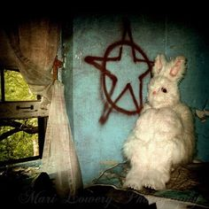 Creepy Rabbit in Abandoned Hospital Photography Print by frighten Arte Horror, Horror Art, Creepy Pictures, Surrealism Photography, Bunny Art, Funny Bunnies, Macabre, Easter Bunny, Happy Easter