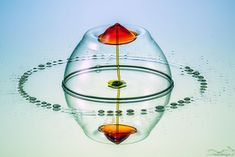 The Unseen Beauty of High Speed Water Drop Photography  - Markus Reugels