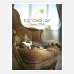 The French Cat now featured on Fab.