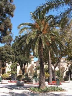 Malta / La Valette / Upper Barraca Gardens