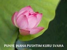 White Tara Mantra (with words)