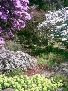 Birmingham Botanical Gardens | Postcards from England ( Birmingham Botanical Gardens - 22/04/10 )