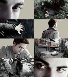 'the twilight saga' characters Twilight Edward, Twilight 2008, Twilight Saga Series, Twilight Cast, Edward Bella, Twilight New Moon, Twilight Series, Twilight Movie, Edward Cullen