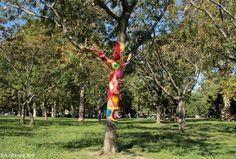 Árbol vestido en Argentina.