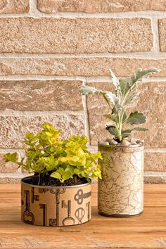 Make Your Own Can Planters - American Lifestyle Magazine Diy Upcycled Planters, Diy Planters Outdoor, Planter Ideas, Recycled Paper Crafts, Upcycled Crafts, Diy Crafts, Recycled Gifts, House Plants Decor, Plant Decor