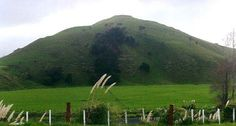 Whiria is a significant place for Ngāpuhi. It is the          home of many of the founding families who come under the          Ngāpuhi roof.