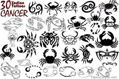Cancer Exclusive Zodiac Tattoos Designs picture 11292