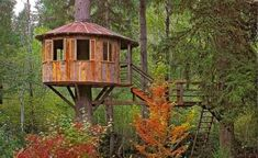 i've daydreamed about treehouses since i was a kid reading 'swiss family robinson'. :)