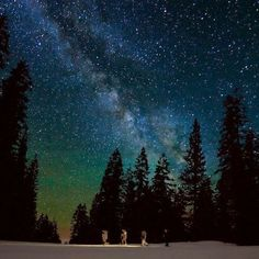10 Destinations With Out-of-This-World Stargazing Experiences Grand Teton National Park, National Parks, Oh The Places You'll Go, Places To Travel, Star Tours, Light Pollution, Sleeping Under The Stars, Dark Skies, Star Sky