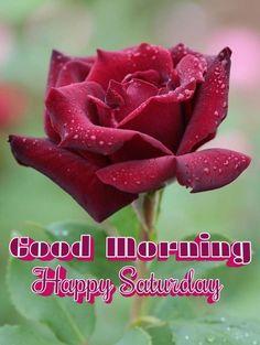 G Morning, Saturday Morning, Happy Saturday, Sunday, Saturday Quotes, Good Night Friends, Good Morning Images, Wednesday, Jackson