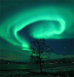 Northern lights - in the shape of the human hippocampus!