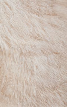 Imagem de wallpaper, fur, and background Wallpaper Fur, Tumblr Wallpaper, Screen Wallpaper, Pattern Wallpaper, Cute Backgrounds, Wallpaper Backgrounds, Iphone Wallpapers, Iphone Backgrounds, Chesire Cat