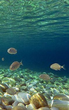 Kipiadi beach underwater.. Paxos (by Marios Katsaros)
