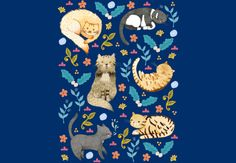 My Cats by JudithLoske