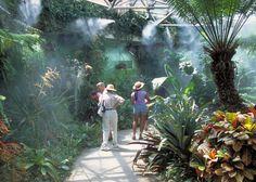 Inside the San Antonio Botanical Garden, Photo Credit: Al Rendon