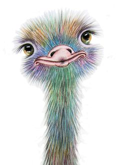 """OSTRICH"" LARGE A3 PRINT From Original Watercolour By Maria Moss"