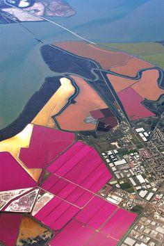 Salt Ponds of San Francisco Bay » Design You Trust