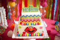 "Photo 12 of 41: Sesame Street inspired / Birthday ""Zoe's Sesame Street Soiree"" | Catch My Party"