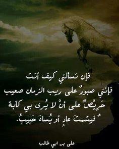الامام علي ابن ابي طالب ~رضي الله عنه