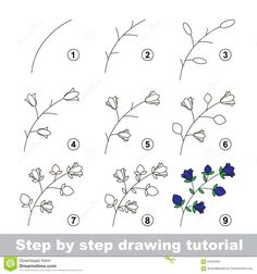 Illustration about Step by step drawing tutorial. How to draw a Bluebell. Illustration of preschool, contour, draw - 65220584 Painting & Drawing, Leaf Drawing, Floral Drawing, Plant Drawing, Drawing Drawing, Drawing Tips, Drawing Flowers, Drawing Faces, Watercolor Drawing