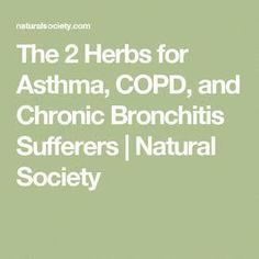 The 2 Herbs for Asthma, COPD, and Chronic Bronchitis Sufferers | Natural Society #asthmatreatment #asthmaawareness
