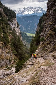 The Alps, hard work getting up there....but you've earned that view. #mountainbike #beautiful #motivation #fitspo