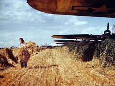 A pretty English girl gathers oats on a farm in midst of widely dispersed Boeing B-17's.