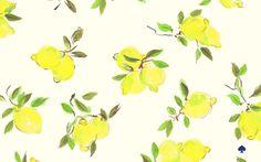 Kate Spade Lemon ShopPlanning Pretty