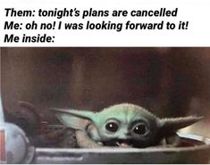 18 Baby Yoda Memes to Make Your Day More Adorable This isn't the Yoda we all came to know and love in the initial 3 movie installments of Star Wars. This little guy is smaller! Just a baby! 9gag Funny, Funny Relatable Memes, Stupid Funny, Funny Cute, The Funny, Funny Jokes, Hilarious, Funny Work, Funniest Memes
